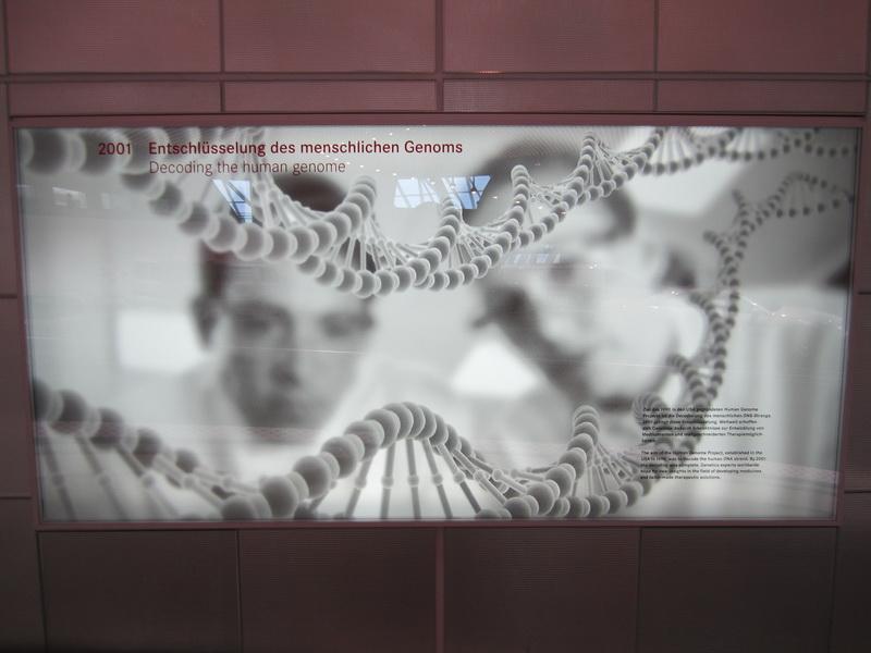 2001 Entschlüsselung des menschlichen Gnoms